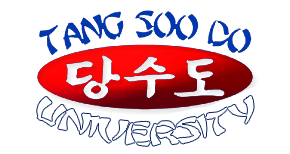 Jason Flame's Tang Soo Do University
